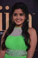 anupama parameswaran hot at iifa 2017DSC_01920007