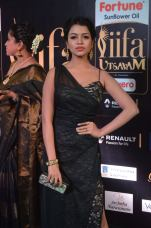 celebrities at iifa awards 2017 - 3DSC_14190473