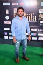 celebrities at iifa awards 2017DSC_0476