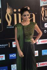 jnani iyer hot at iifa awards 2017Janani Iyer (58)