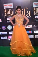 madhumitha hot at iifa awards 2017DSC_9947