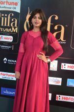 monal gajjar hot at iifa awards 2017DSC_83300027