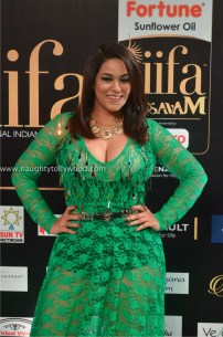 mumaith khan hot at iifa awards 2017 DSC_16950746_wm