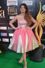 nikita narayan hot at iifa 201720