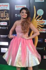 nikita narayan hot at iifa 201721