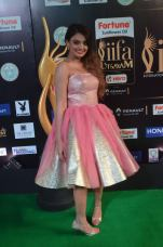 nikita narayan hot at iifa 201727