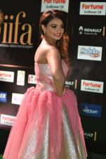 nikita narayan hot at iifa 201791