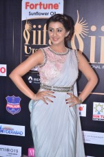 nikki galrani hot in saree at iifa awards 2017DSC_7582