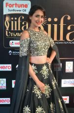 pragya jaiswal hot at iifa awards 2017DSC_91300042