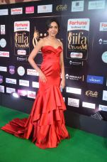 ritu varma hot at iifa awards 2017 DSC_12610316