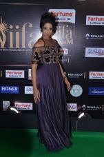 sanjjana hot at iifa awards 2017DSC_75400044