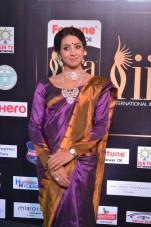 sanjjana hot in saree at iifa awards 2017 DSC_0596