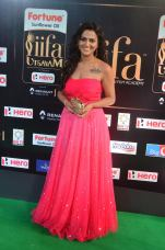sredha hot at iifa awards 2017DSC_83960046
