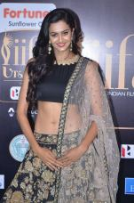 subra ayyappa hot at iifa awards 2017DSC_63200034