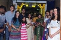Anandi Indira Production (4)
