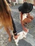 I get pet wherever I go.