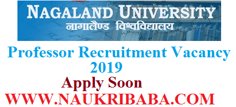 NAGALAND UNIVERSITY vacancy 2019 apply soon