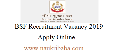bsf recruitment vacancy 2019