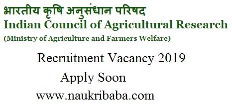 icar recruitment vacancy 2019