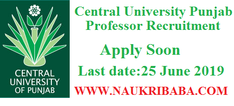 CENTRAL UNIVERSITY PUNJAB PROFESSOR recruitment vacancy 2019