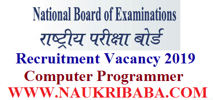 NBE computer programmer recruitment-vacancy-2019-apply-soon