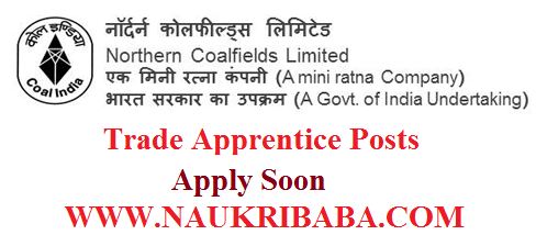ncl trade apprentice POSTS recruitment vacancy 2019 APPLY SOON
