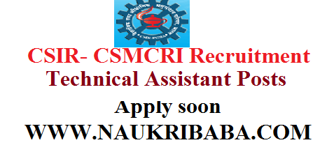 technical assistant recruitment vacancy 2019 apply soon