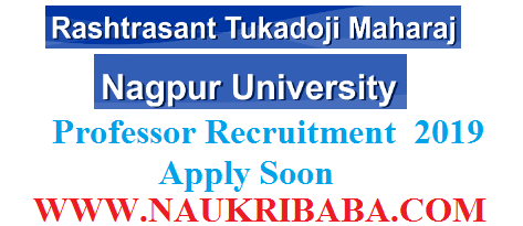 nagpur university assistant professor apply soon