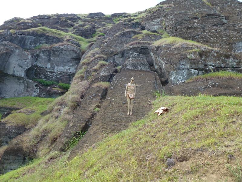 Easter Island Survey