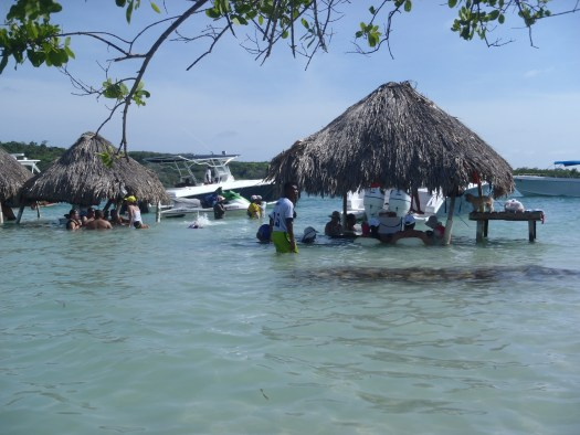 Palapas at entrance to Beach Bar