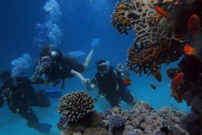 Pratiquer la plongée sous-marine relaxation