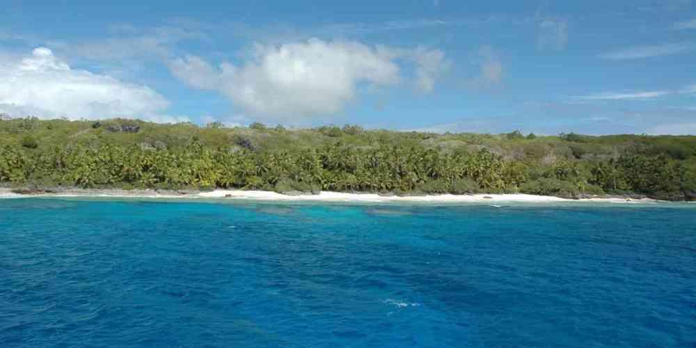 38 millones de piezas de desechos plásticos encontradas en una isla deshabitada del Pacífico Sur