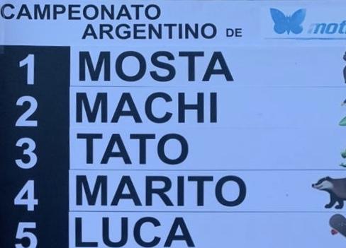 Argentino de moth