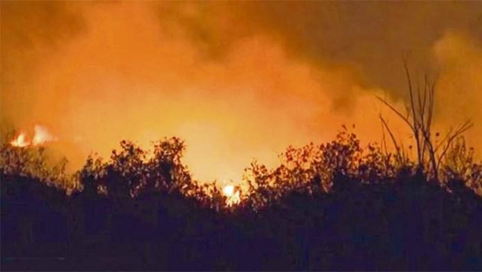 Fuego en islas del Paraná