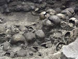 Tower of Skulls: A 500-year-old human skull 'tower' found in Mexico, amazing – the skull tower and remains of 119 people found in Mexico