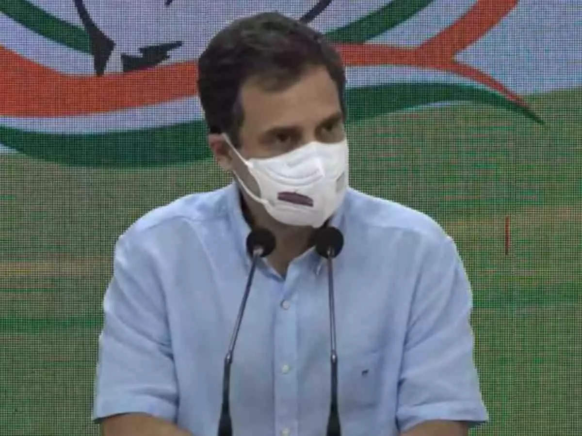 rahul gandhi news: After drawing a picture of Nehru, Rahul said, how will you remove it from the hearts of the people?  – On drawing a picture of Nehru, Rahul said how will you draw Pandit Nehru from the hearts of the people?