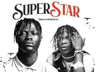 Mr Paradise Ft. Seyi Vibez – Superstar Mp3