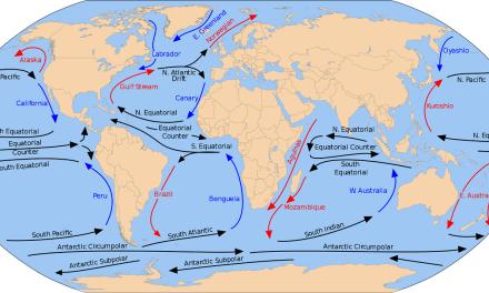 Las corrientes oceánicas, características generales.