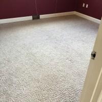 Cost To Carpet Whole House - Carpet Vidalondon