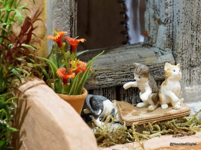gatos-jugando-dsc01489_dxo