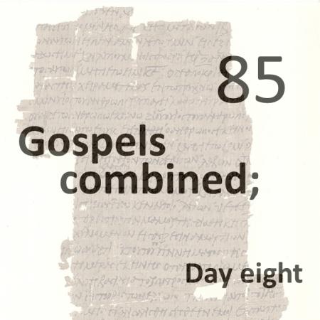 Gospels combined 85 - day eight