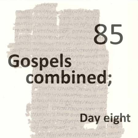 Gospels combined 85 - day eight
