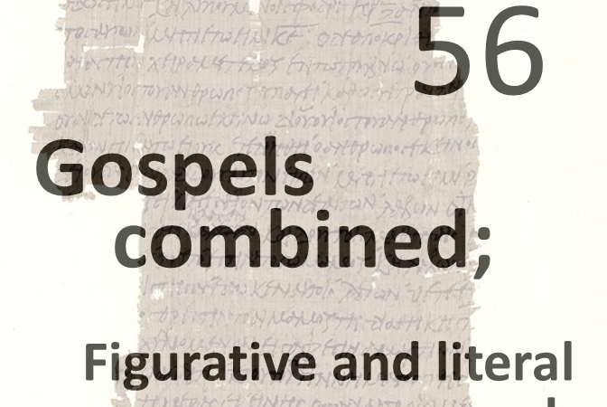Gospels combined 56 - figurative and literal speech