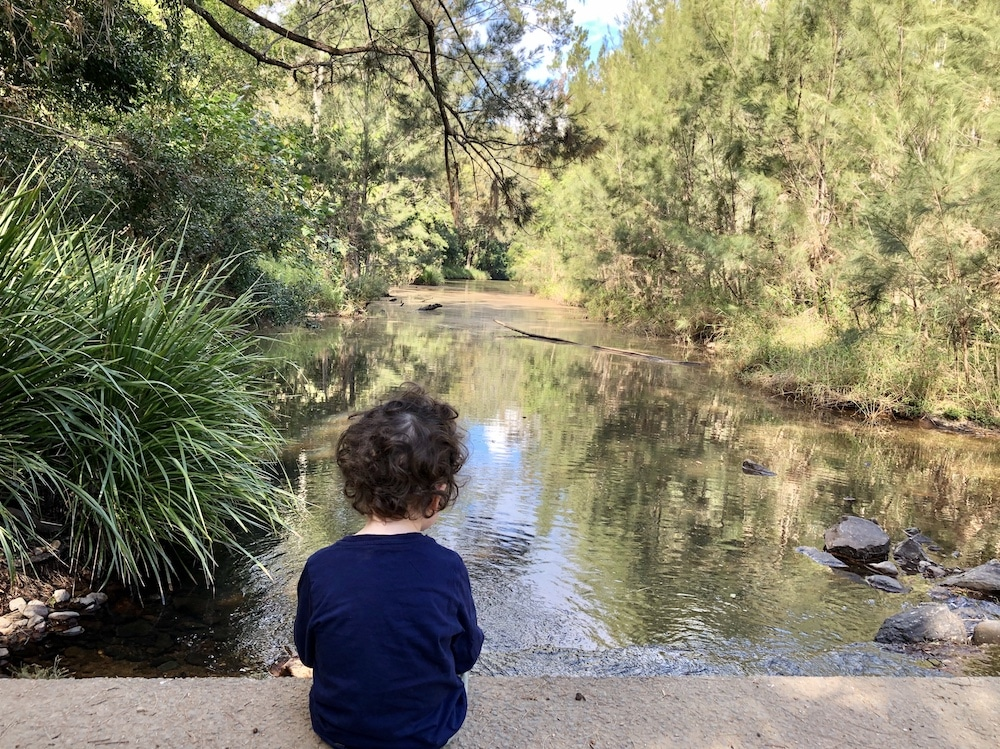 Bunya Crossing Reserve boy overlooking the water