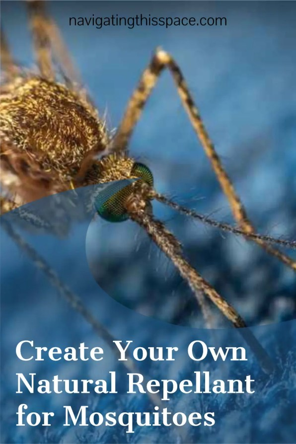 Create your own natural repellant for mosquitoes