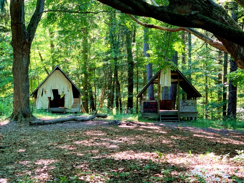 the best new york state parks: Beechwood State Park