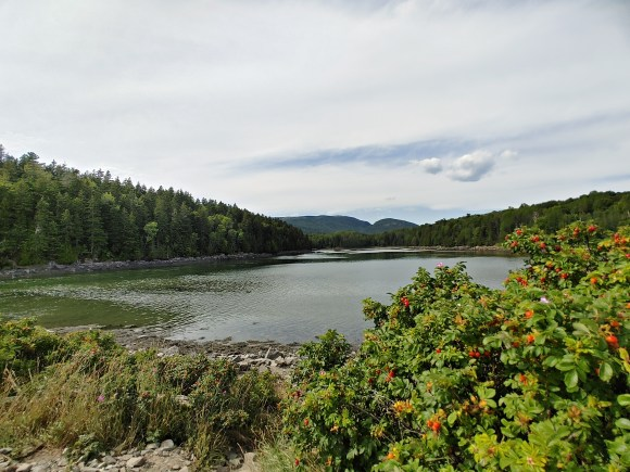 Acadia National Park with kids, pond.