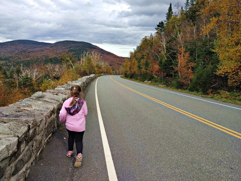 Walking along the Veteran's Memorial Highway