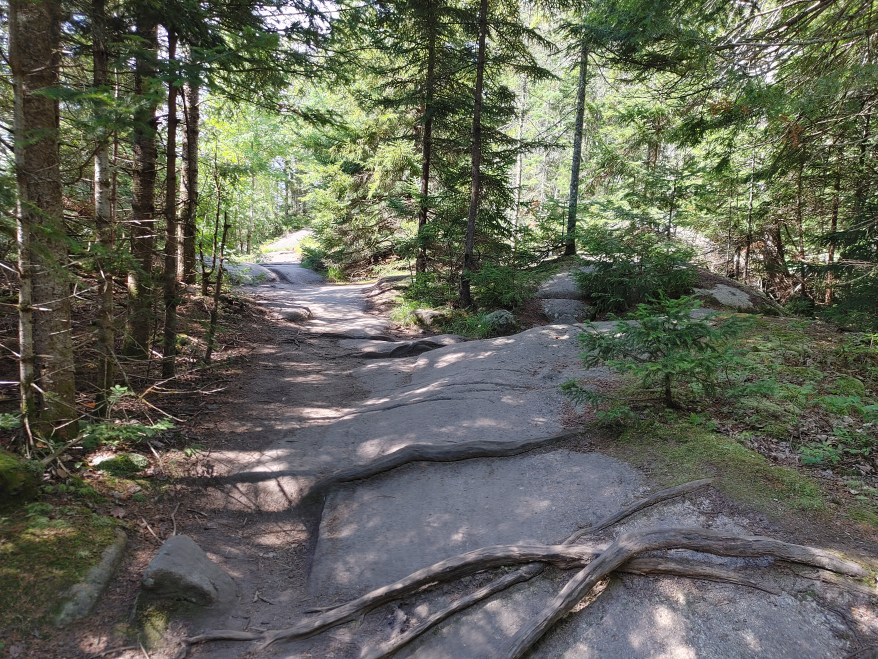 rocky section on Bald Mountain