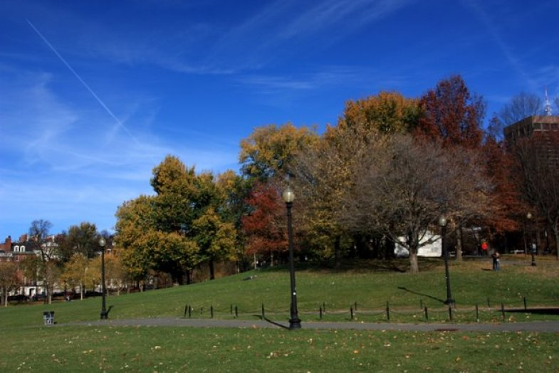 The Boston Common